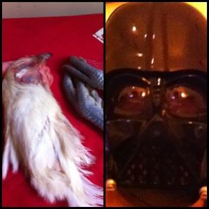 Darth Vader et la poularde